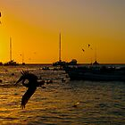 In-Flight Silhouettes in Los Roques. by Deborah V Townsend