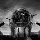 B-17 by Lee LaFontaine