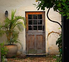 Old Cedar Door  by triciamary