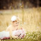Clover patch by catrionam