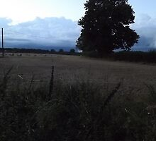 Countryside: Kingswood, Surrey -(260811h)- digital photo by paulramnora