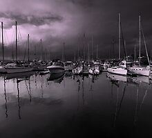 Mirrored Marina by Jill Fisher