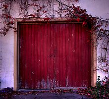 The red door by Rosalie Dale