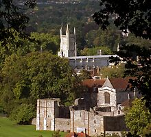 Winchester College, Wolvesey Palace & Castle, seen from St Giles Hill, southern England by Philip Mitchell