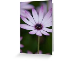 Flower 45 Greeting Card
