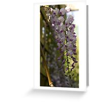 Hanging Flowers Greeting Card