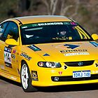 Targa West 2011, 14c Emeco Holden Monaro CV8 by Immaculate Photography
