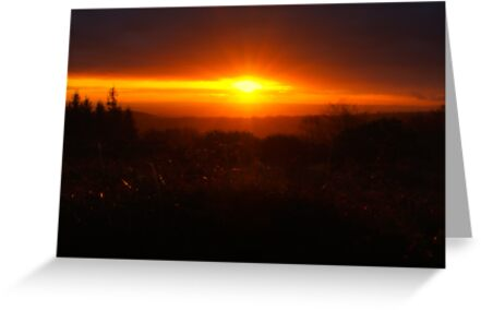 Quantock Sunrise by VisivoMedia