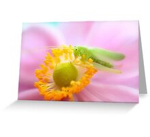 Hopper on the Anemone Greeting Card