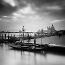 Venice: Santa Maria della Salute by Nina Papiorek