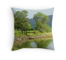 View From The Barn In Ruins Throw Pillow