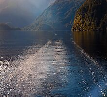 Mid Morning on Doubtful Sound by Odille Esmonde-Morgan