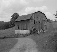 The Farm by gernerttl