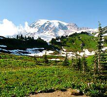 Alpine Landscape - Mt. Rainier, WA by Britland Tracy