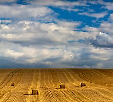 """""""Lines and Squares""""   Chicheley Hill by James  Key"""