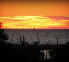 Sun Rising © by Dawn M. Becker