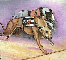 Bob's winning greyhound by Woodie