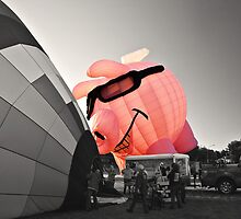 Pink Piggy by PhotosByHealy