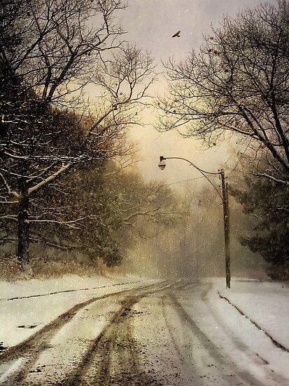 High Park Main Road by KatMagic Photography