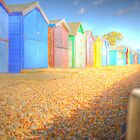Bright Beach Huts by Louise Godwin
