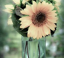 Sunflower in a Tall Vase by marycarnahan