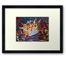 Candy Crab Framed Print