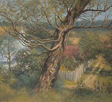 Old willow by Vera Kalinovska