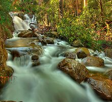 Nigothoruk Creek, Alpine National Park by Kevin McGennan
