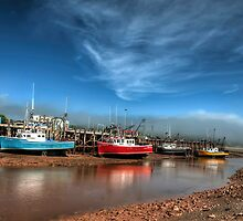 Low tide in bay of Fundy by Sylvain Dumas