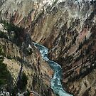 Yellowstone River Canyon by BeckyMP