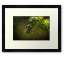 As Green as Green..... Framed Print