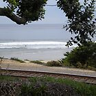 The Track to La Jolla by saphiresong