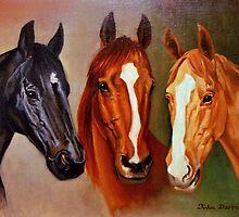 Horses by John Darren Sutton