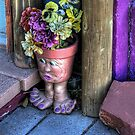 Doorstep Treasures by Diana Graves Photography