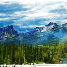 Alberta, near Banff by Sandrine Pelissier