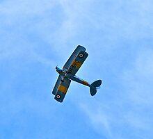 Bi-plane by Ali Brown