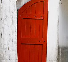 Red Door by Sea-Change