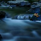 small stream by pdsfotoart