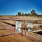 Australian outback, station gate. by Lynne Haselden