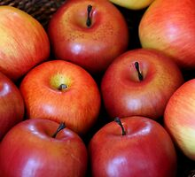 Bowl of Red Apples by Michael L. Colwell