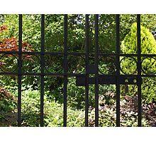 My Secret Garden Photographic Print