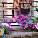Pink Petunias and Watering Cans by Susan Savad