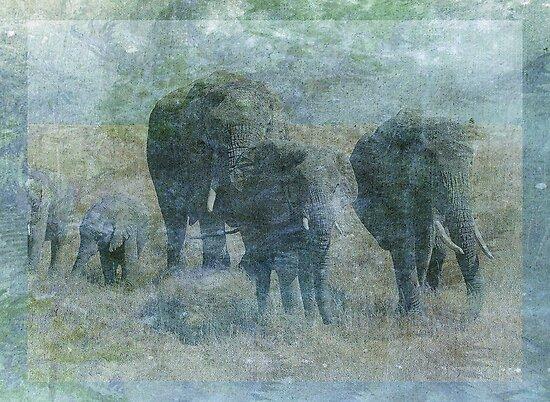 Chalk Elephants by Sarah Vernon