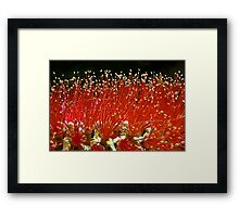 In This Macro World: A Time for Harvest Framed Print