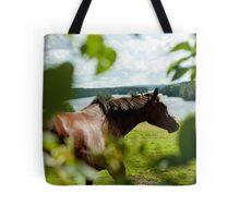 Häst, Fällfors Tote Bag