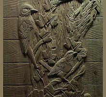 Birds by John Darren Sutton