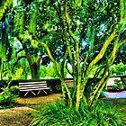Florida Park by Thomas Eggert