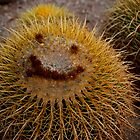 Desert Smile by Richard Rushton