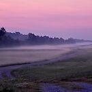 Bayou Sunrise by Sharon Elliott-Thomas