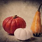  Three pumpkins by AD-DESIGN